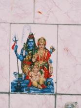 India - Travel Photography - Throwback Thursday