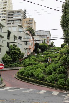 San Francisco Travel Blog (74)