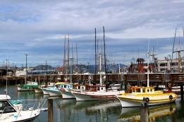 San Francisco Travel Blog (8)