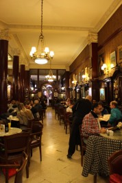 Buenos Aires Travel Blog (28)