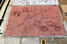 Chinese Theatre Concrete Hand Prints Hollywood (11)