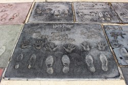 Chinese Theatre Concrete Hand Prints Hollywood (20)