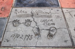 Chinese Theatre Concrete Hand Prints Hollywood (31)