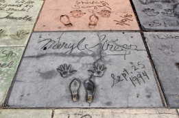 Chinese Theatre Concrete Hand Prints Hollywood (4)
