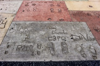 Chinese Theatre Concrete Hand Prints Hollywood (46)