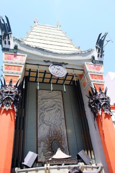 Chinese Theatre Concrete Hand Prints Hollywood (49)