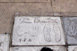 Chinese Theatre Concrete Hand Prints Hollywood (55)