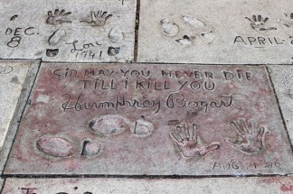 Chinese Theatre Concrete Hand Prints Hollywood (58)