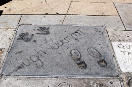 Chinese Theatre Concrete Hand Prints Hollywood (8)