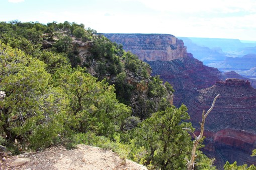 Grand Canyon Travel Blog (32)
