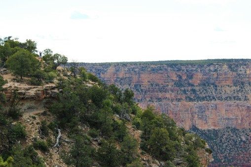 Grand Canyon Travel Blog (37)