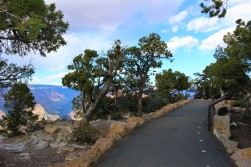 Grand Canyon Travel Blog (46)