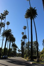 LA Travel Blog (17)