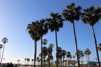 LA Travel Blog (26)