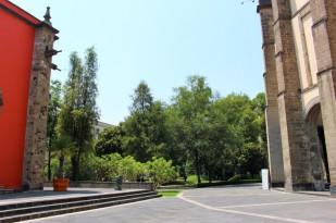 Mexico City Travel Blog 2 (33)