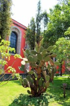 Mexico City Travel Blog 2 (36)