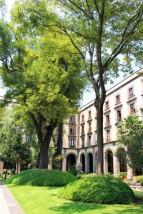 Mexico City Travel Blog 2 (38)