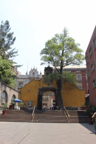 Mexico City Travel Blog 2 (8)