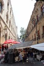 Mexico_City_Travel_Blog (72)