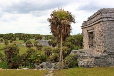 Things To Do In Tulum Tulum Ruins (10)