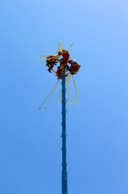 Things To Do In Tulum Voladores (1)