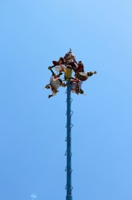 Things To Do In Tulum Voladores (3)