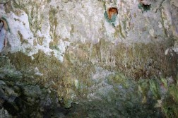 Things_To_Do_In_Tulum_Mexico_Grand_Cenote (41)