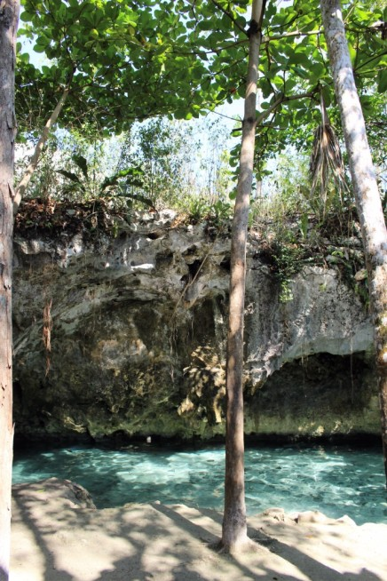 Things_To_Do_In_Tulum_Mexico_Grand_Cenote (47)
