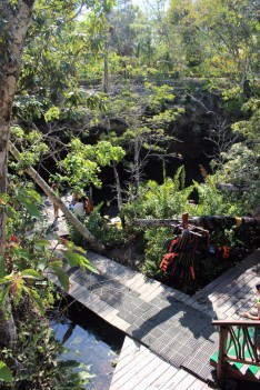 Things_To_Do_In_Tulum_Mexico_Grand_Cenote (54)