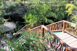 Things_To_Do_In_Tulum_Mexico_Grand_Cenote (56)
