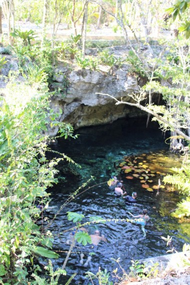 Things_To_Do_In_Tulum_Mexico_Grand_Cenote (60)