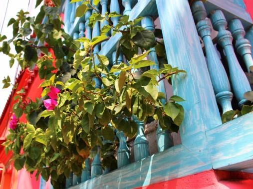 Cartagena Colombia Travel Blog 2 (18)