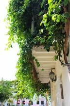 Cartagena Colombia Travel Blog 2 (27)