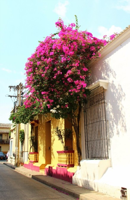 Cartagena Colombia Travel Blog 2 (34)