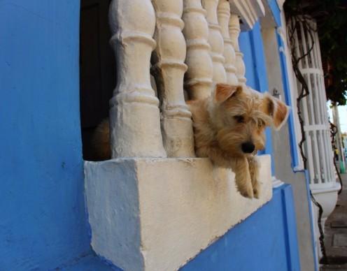 Cartagena Colombia Travel Blog 2 (4)