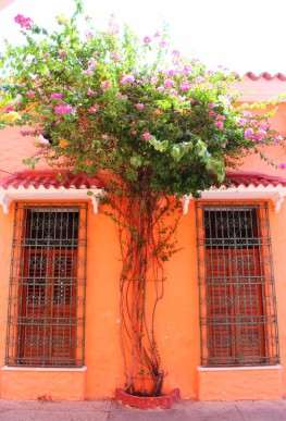 Cartagena Colombia Travel Blog 2 (5)