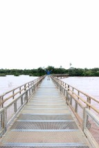 Iguazu Falls Travel Blog (28)