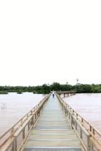 Iguazu Falls Travel Blog (29)