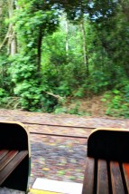 Iguazu Falls Travel Blog (3)