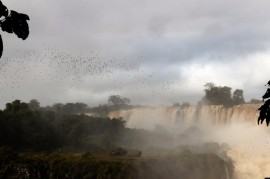 Iguazu Falls Travel Blog (38)