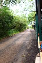 Iguazu Falls Travel Blog (4)