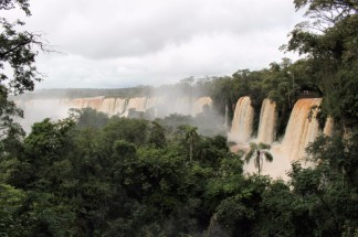Iguazu Falls Travel Blog (46)