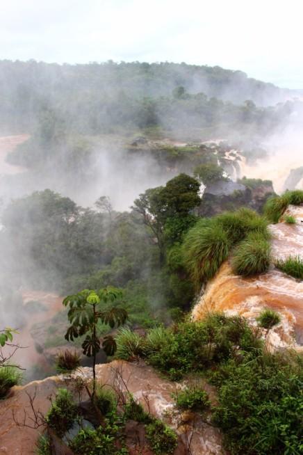 Iguazu Falls Travel Blog (49)