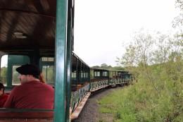 Iguazu Falls Travel Blog (58)