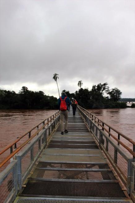 Iguazu Falls Travel Blog (8)