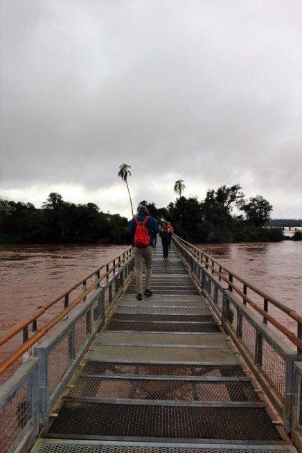 Iguazu Falls Travel Blog (8)