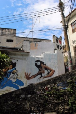 Rio Travel Blog 2 (15)