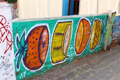 Valparaiso Chile Travel Blog (102)