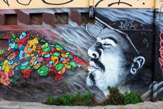 Valparaiso Chile Travel Blog (114)
