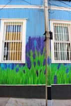 Valparaiso Chile Travel Blog (122)